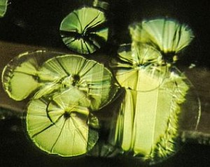 Peridot Lily Pads Inclusions